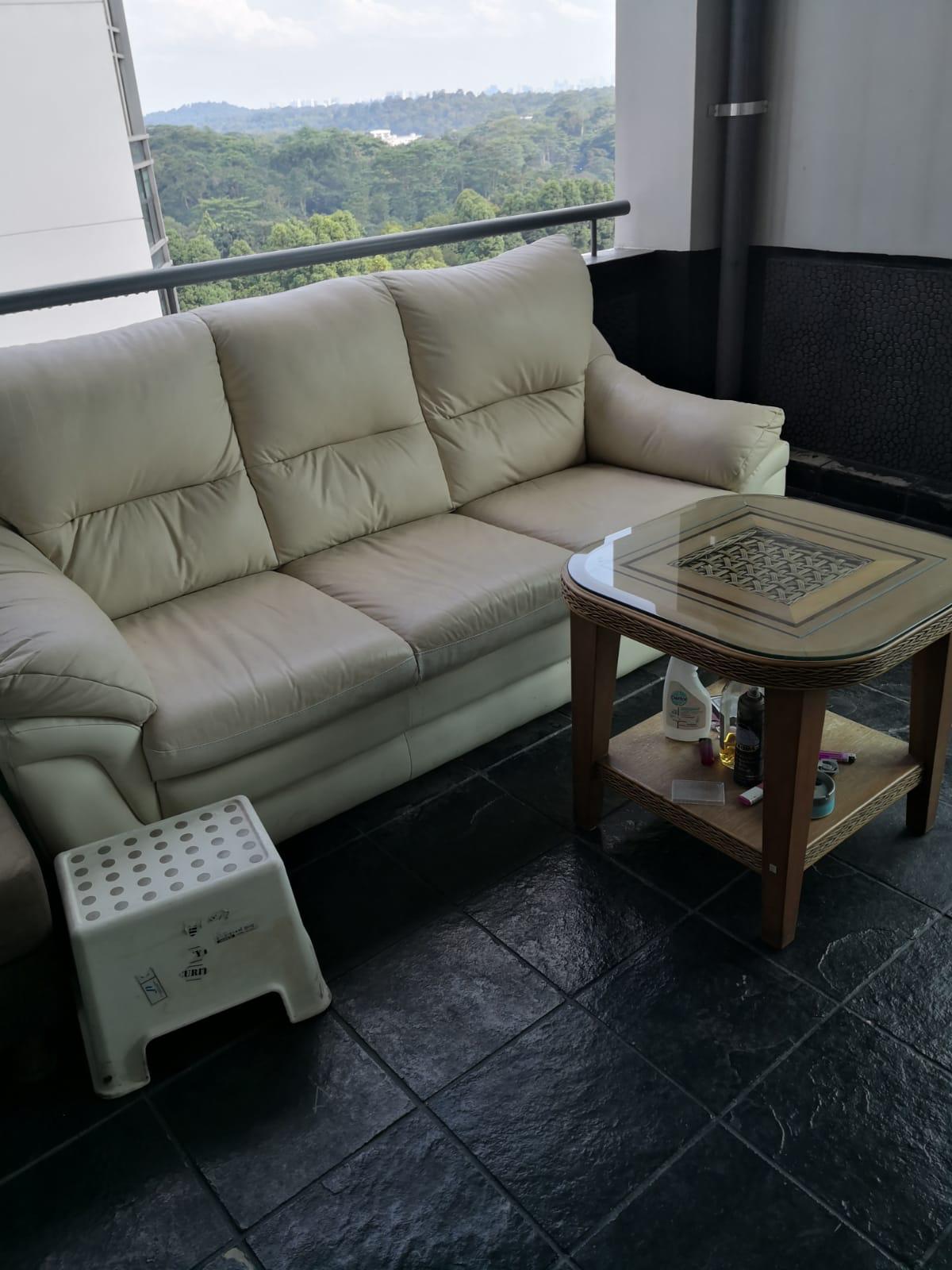 新加坡白色沙发转让